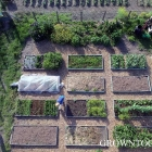 May tour of the kitchen garden