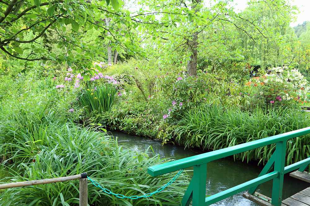 Giverny water garden